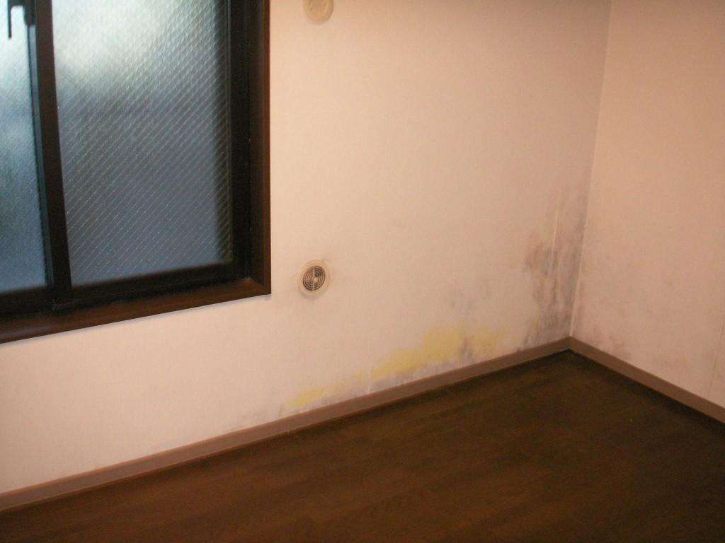 日当たりの悪い部屋の壁紙のカビ